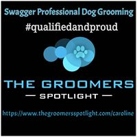 Th Groomers Spotlight Profile