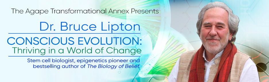 Lipton-webjpg
