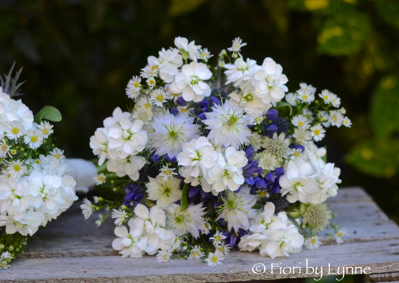 summer-bouquet,blue-agapanthus,nigella,white-stocks,aster,astrantia,country style.jpg