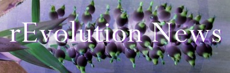 Evolution news graphic