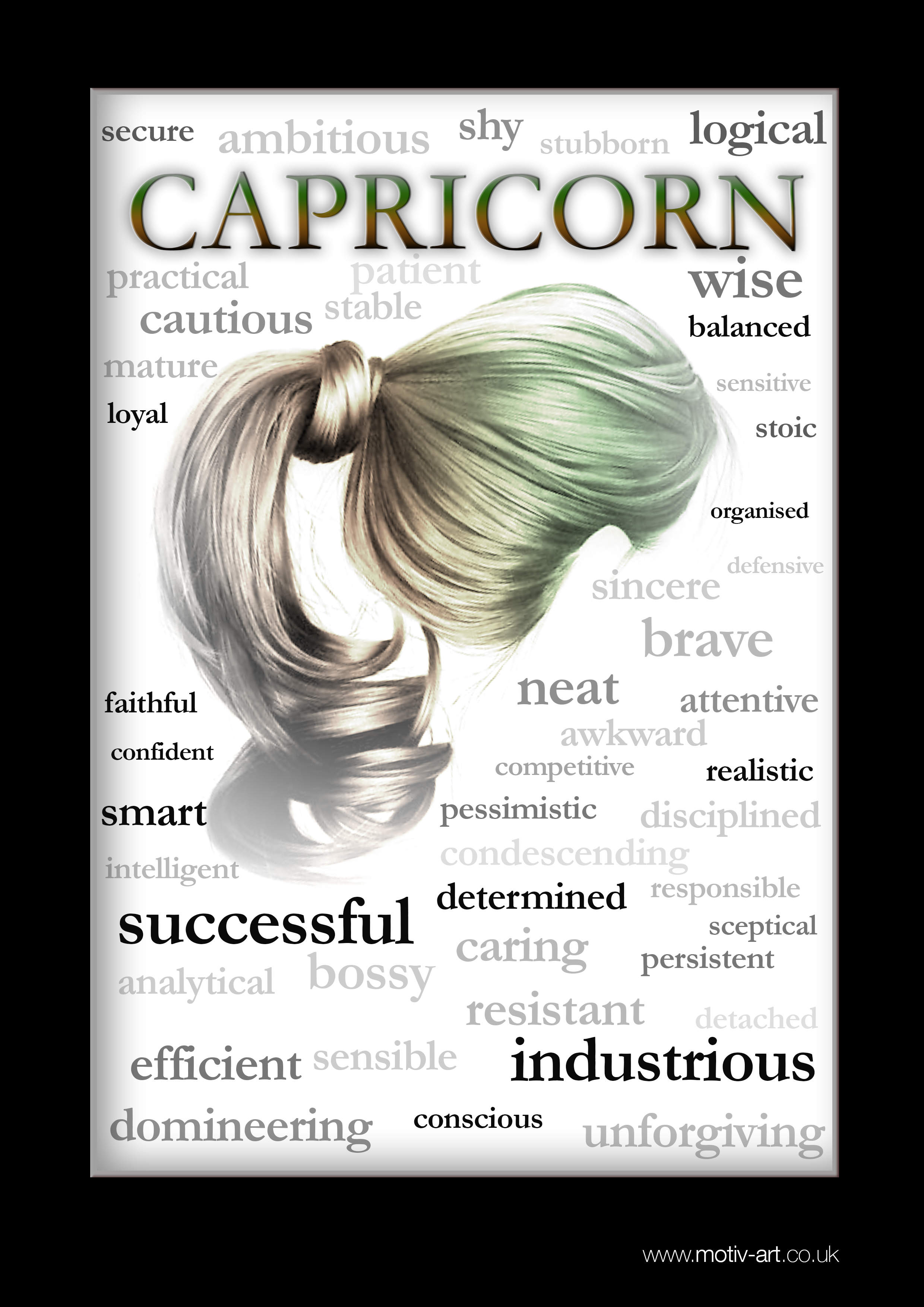 Capricorn - 23 Dec - 20 Jan