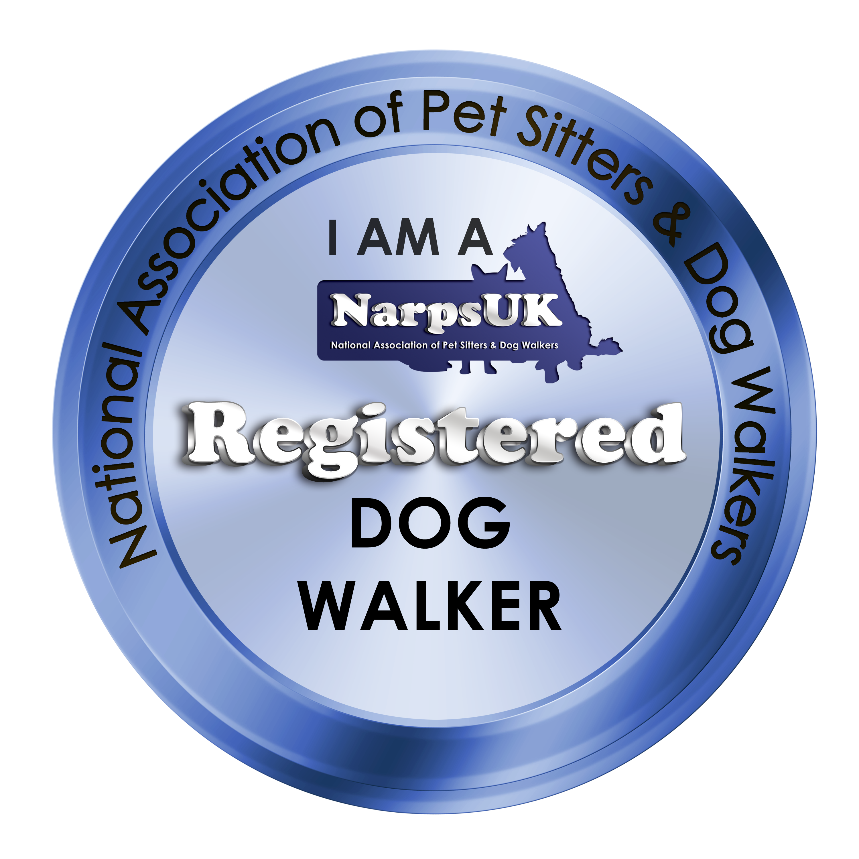 I-am-Dog-Walkerpng