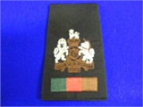 WO1 RSM Rank Slide. Single (0209 B4)