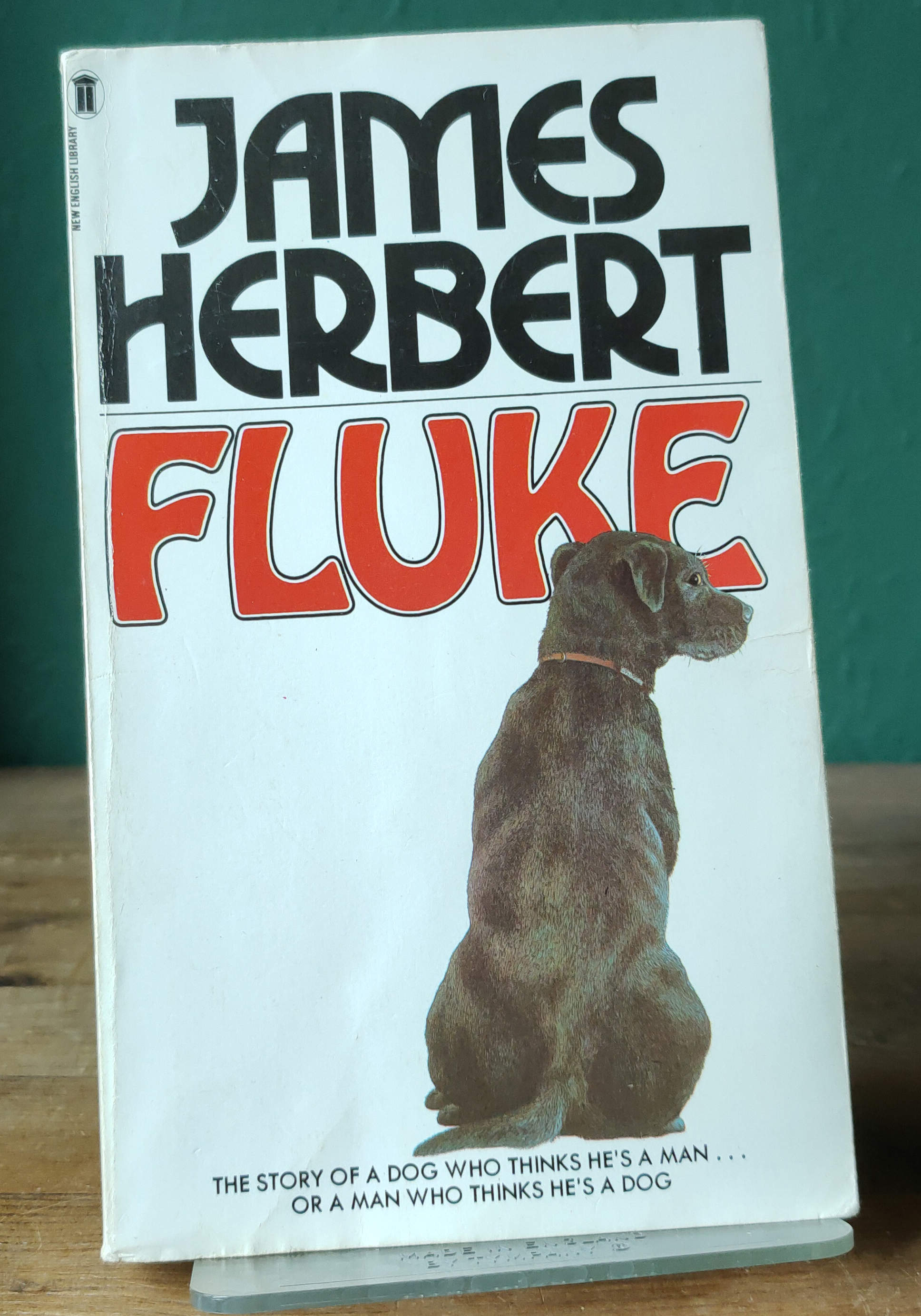 Fluke UK First Paperback