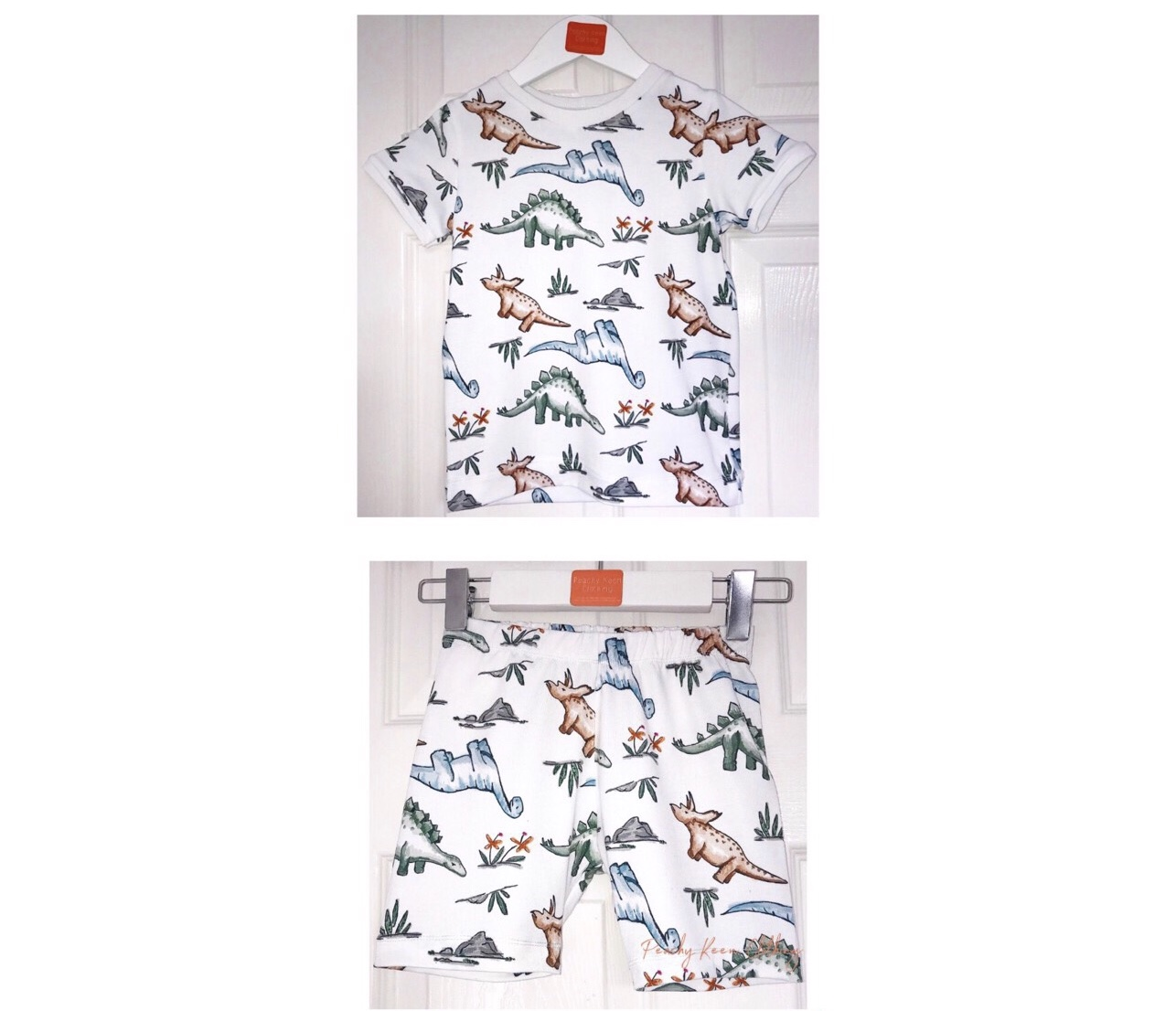 Water Colour Dinosaur Set