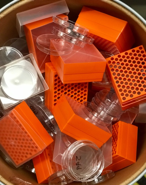 Petri dishes & pipette holders.jpg