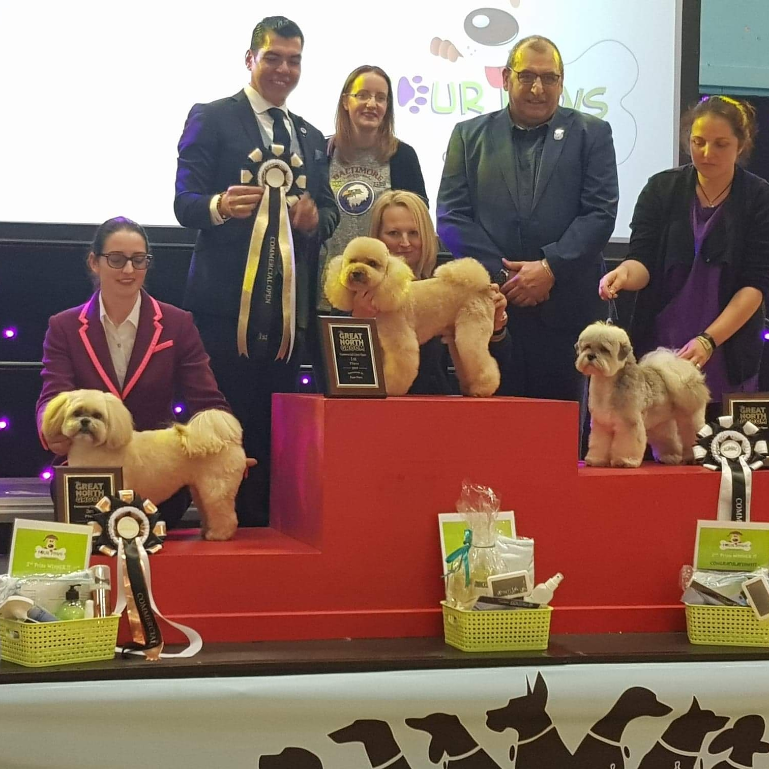 1st Place Commercial Open, Great North Groom 2019