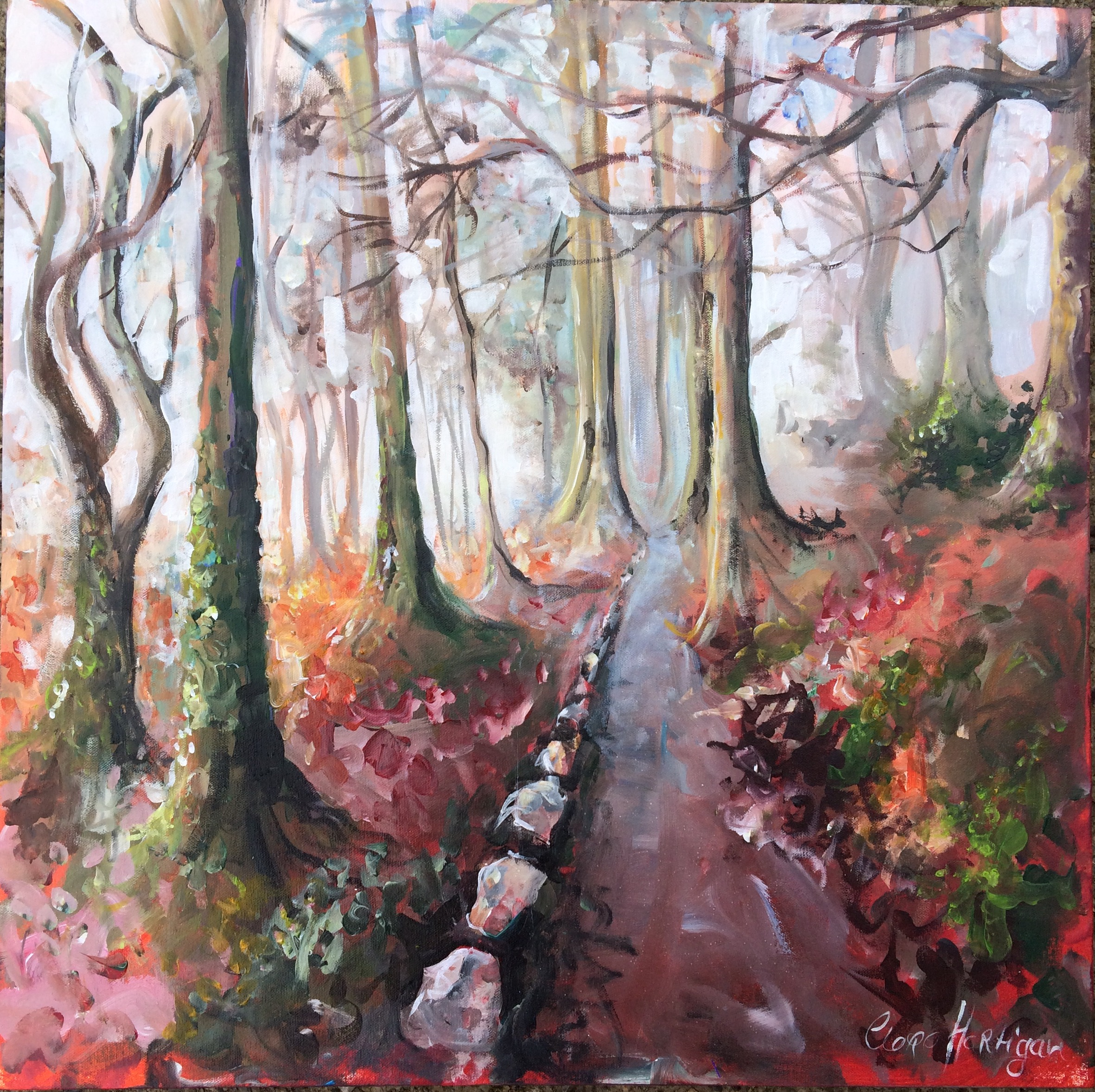 Castleconnell Fairy Woods (sold)