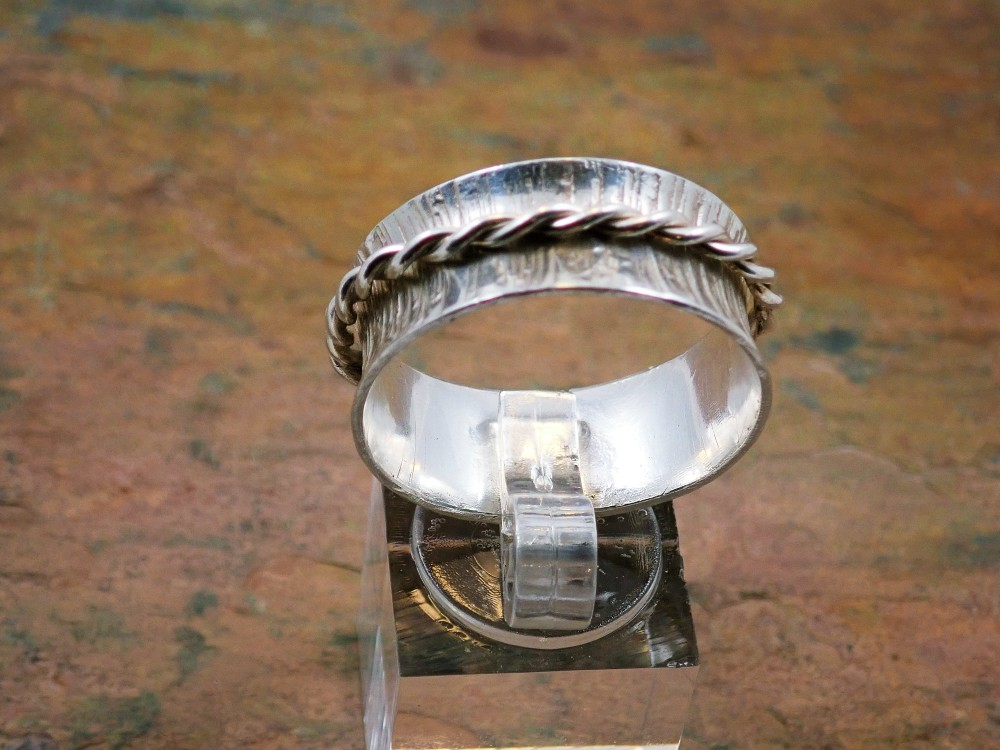 Spinner ring with twisted wire spinner