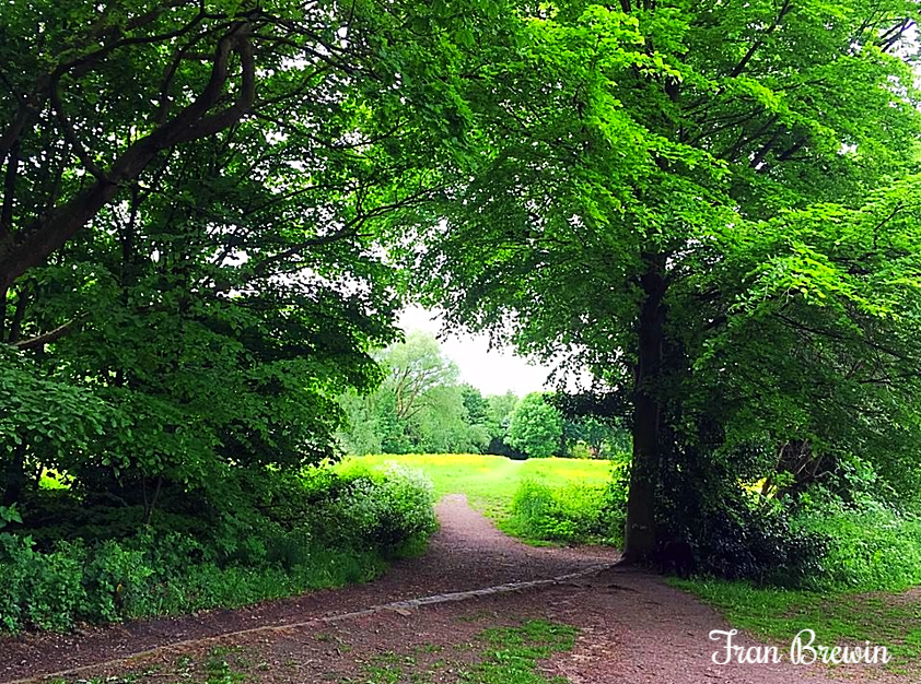 Heaton Mersey Common