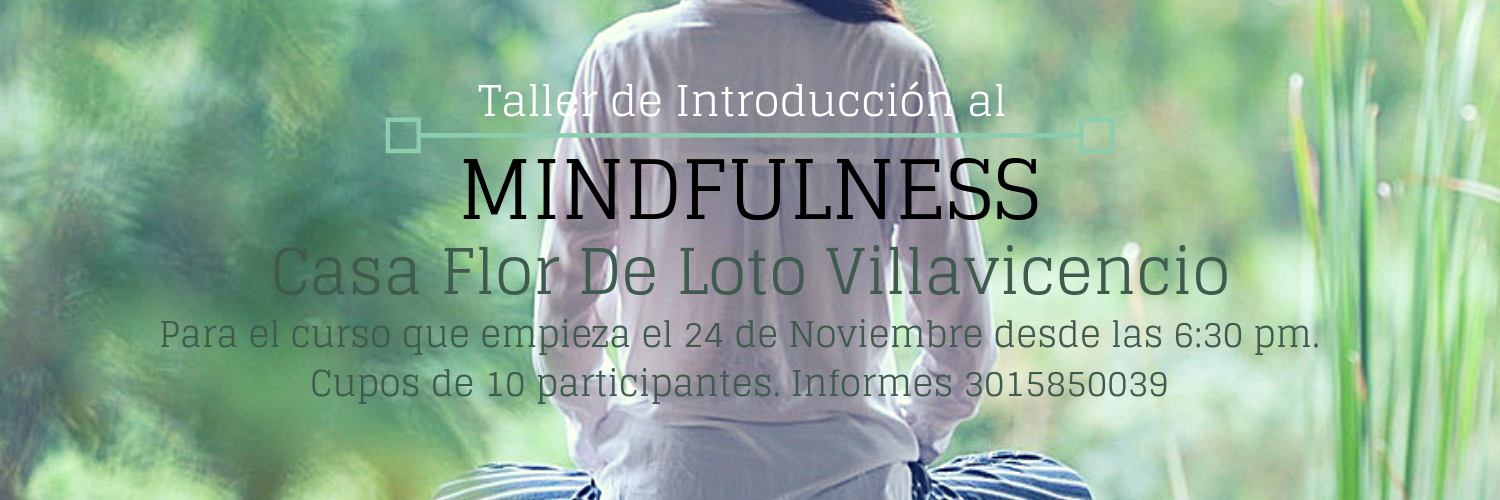 Taller De Introduccion Al Mindfulness