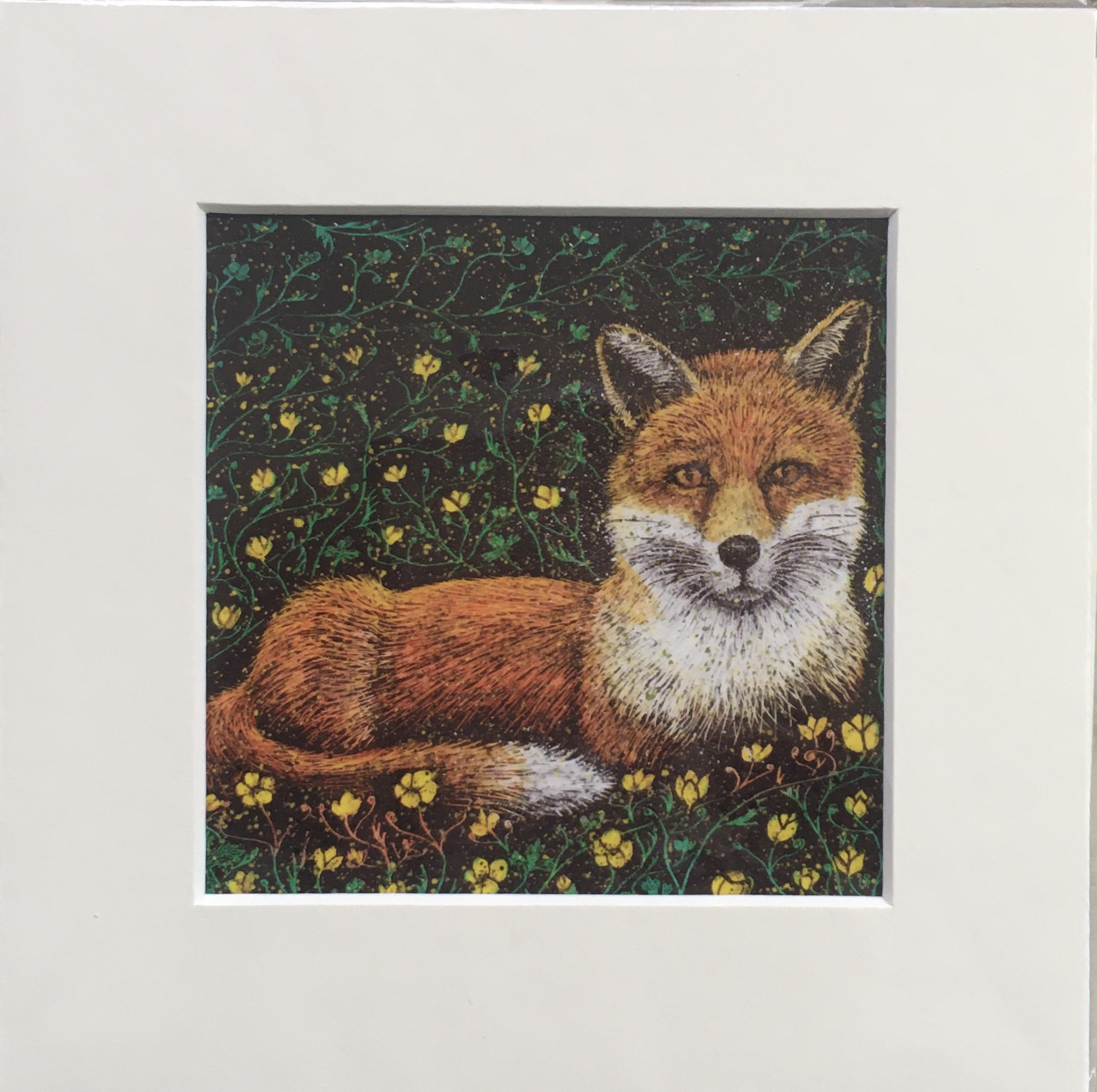 'Buttercup' small mounted print