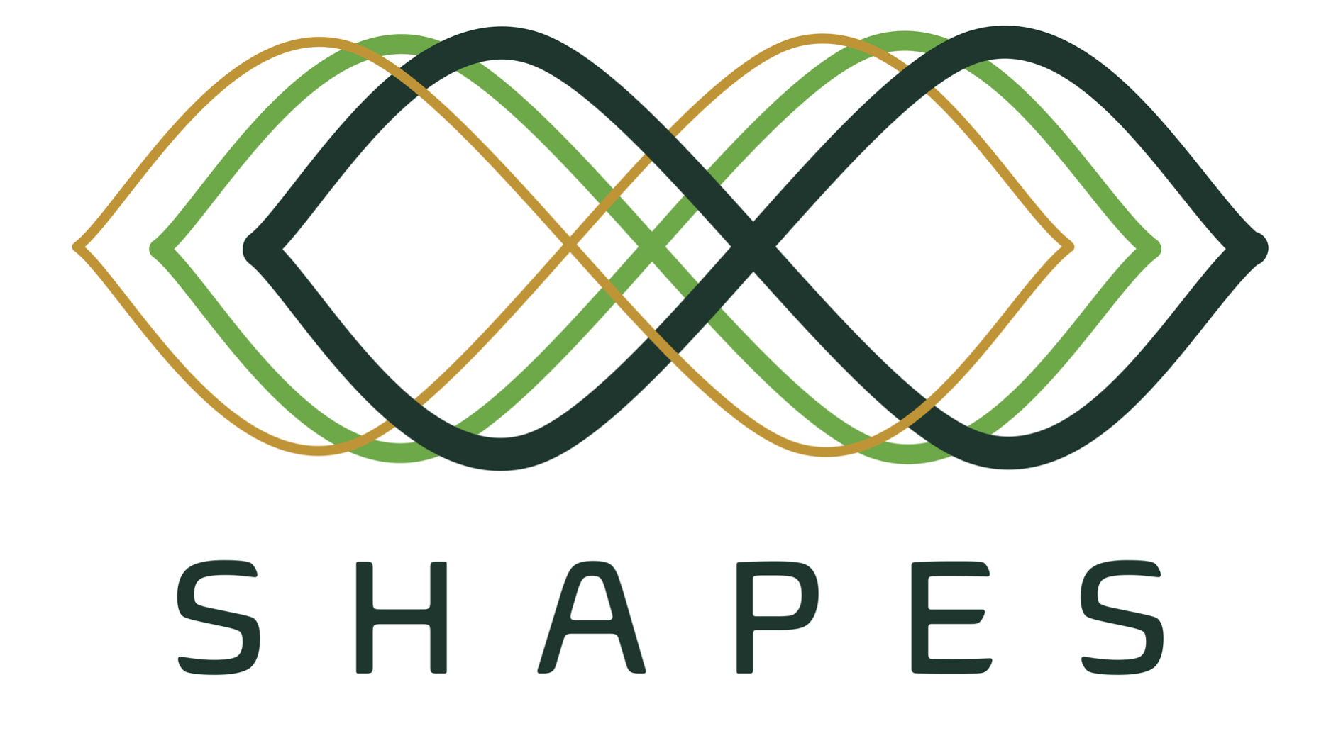 SHAPES_Logo_transparentpng