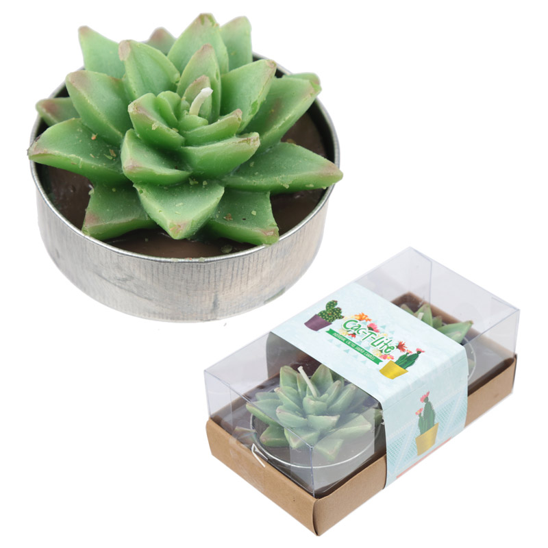 Cactus Tealight candle set of 2