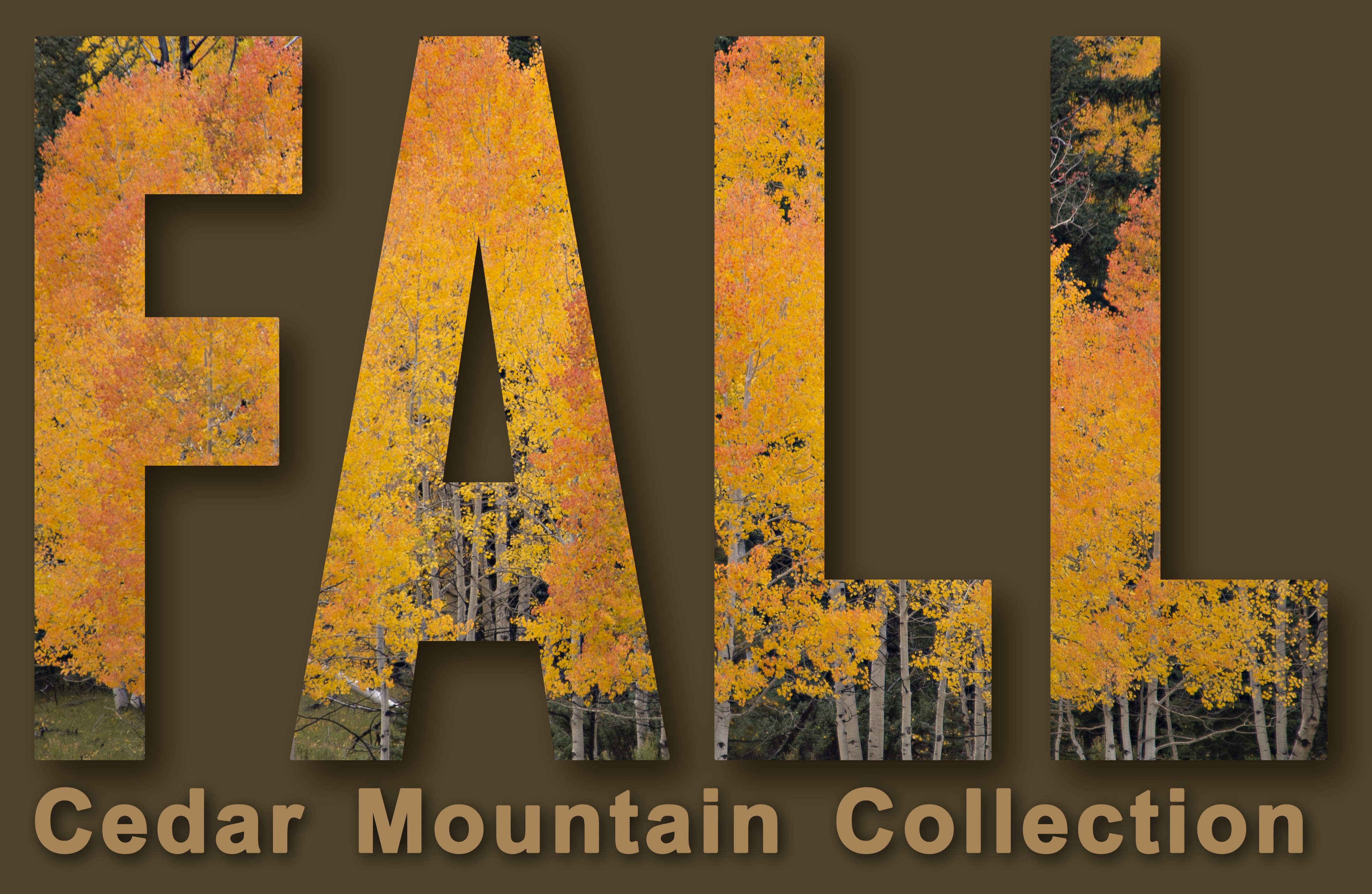 NEW RELEASE FALL COLLECTION BY MIKE MONAHAN