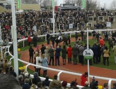 Altior Cheltenham Winners Enclosure 2016