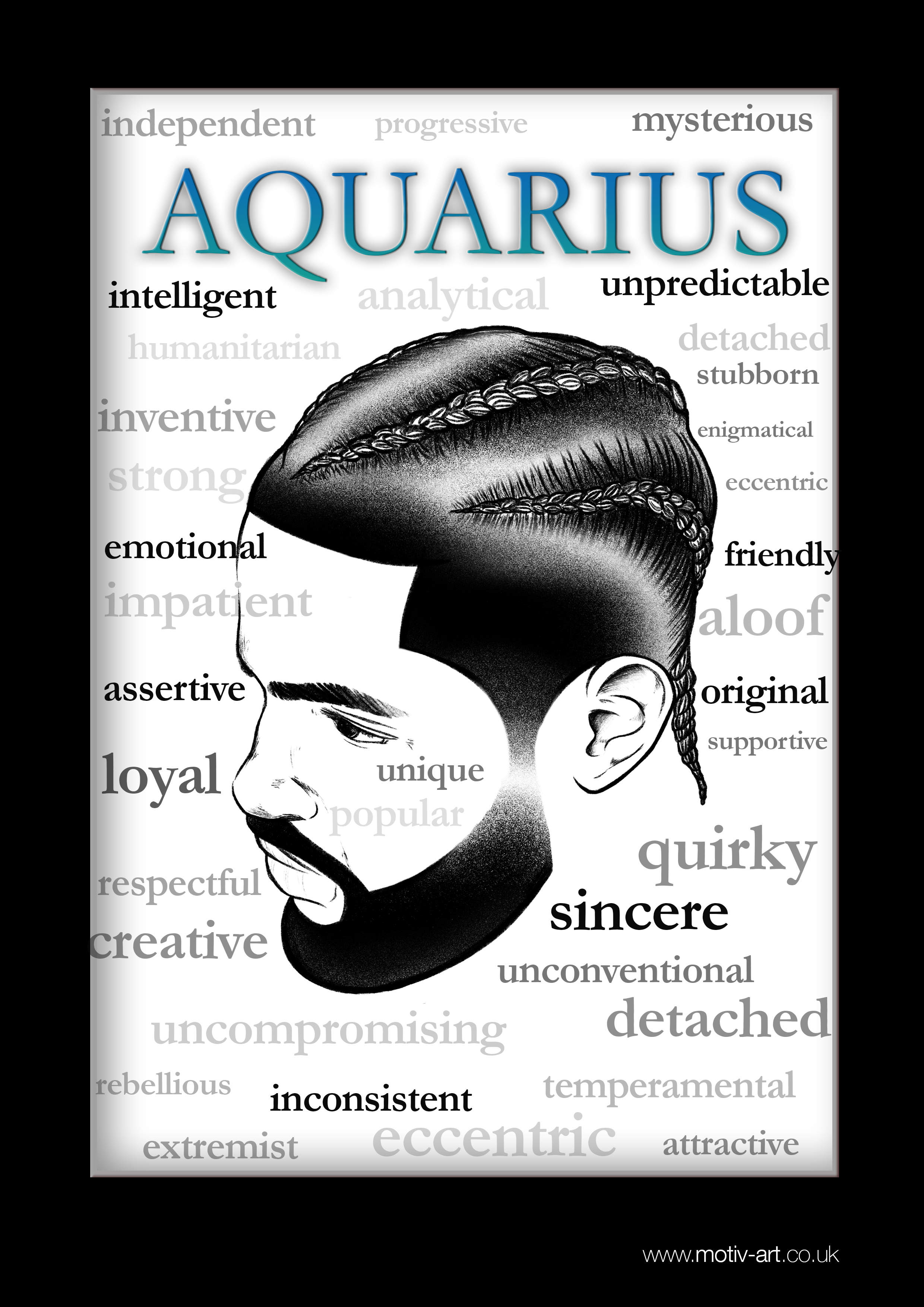 Aquarius - 21 Jan - 19 Feb