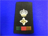 Lt Col Rank Slide. Pair (0214 B4)