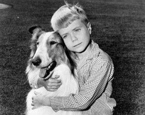 The Heroic love of Lassie and Timmie