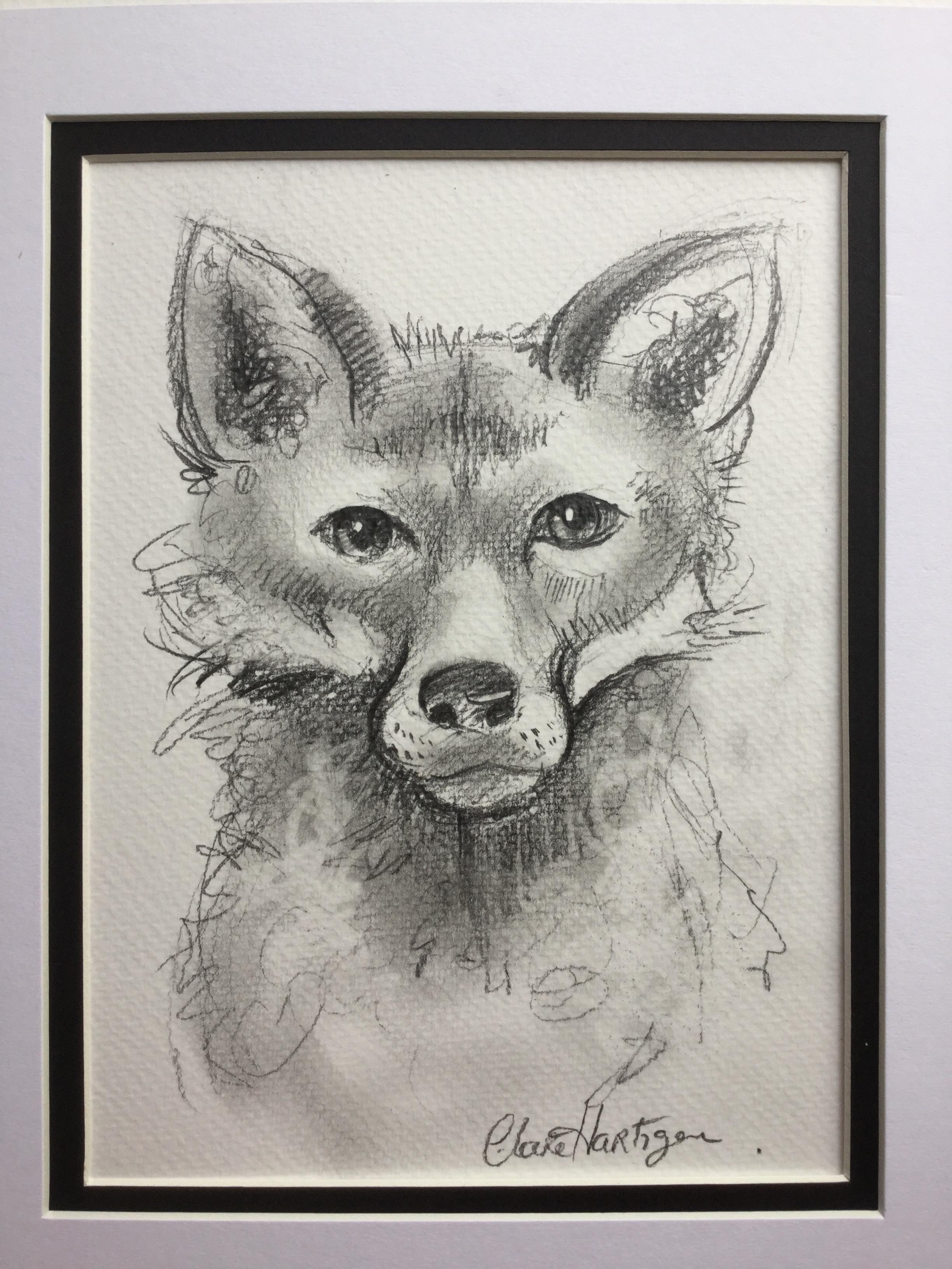 Portrait of an Irish Red Fox (sold)