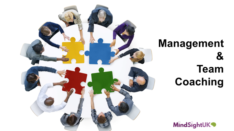 Management and Team Coaching