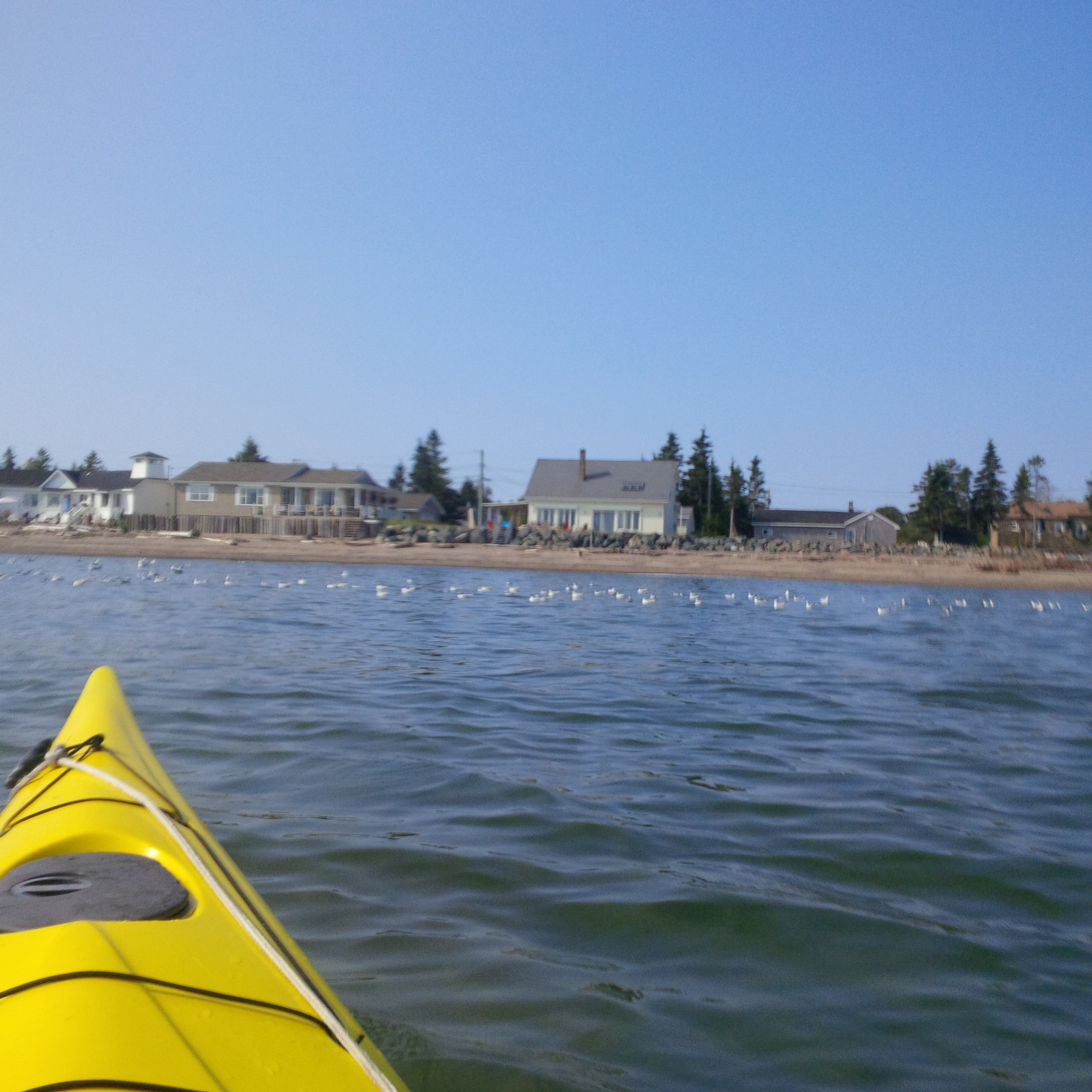 View of Seascape from a Kayak