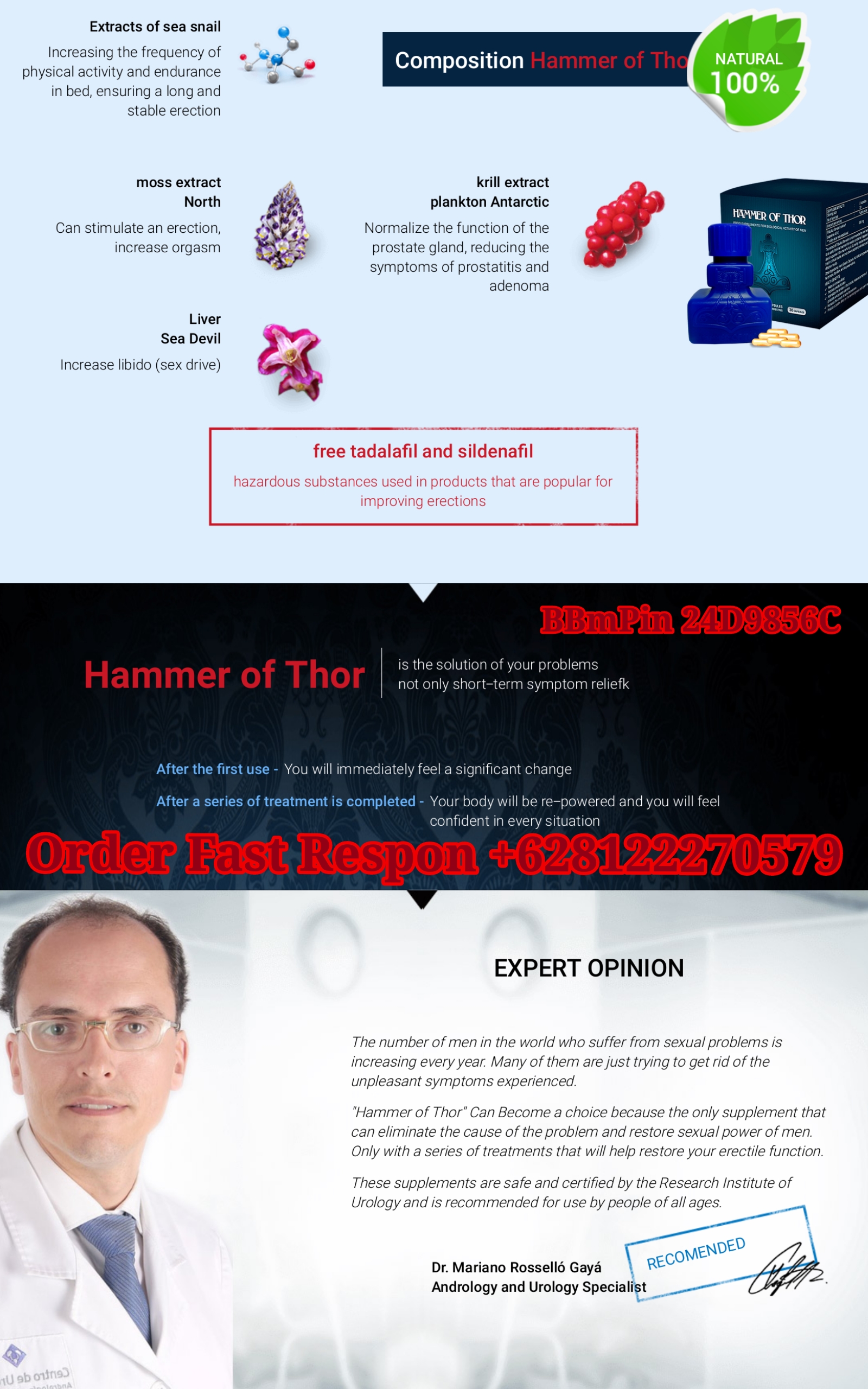 thorhammer1png