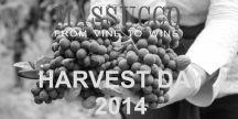 HARVEST DAY 2014