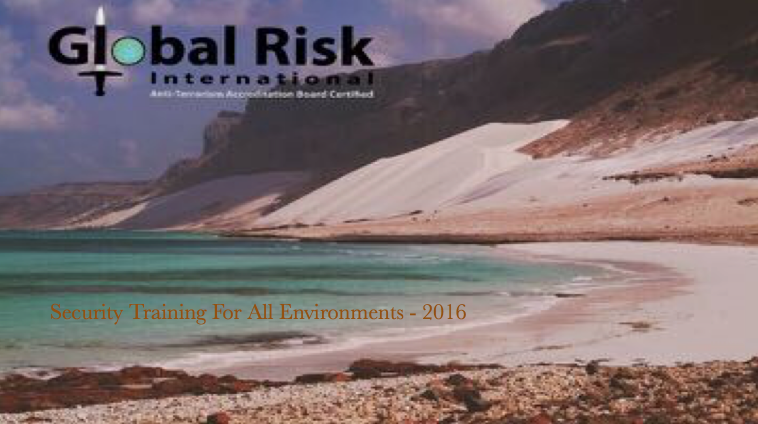 Global Risk International Brochure
