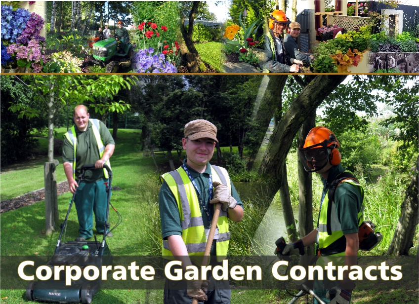 http://www.midstream.org.uk/social-care/landscaping-and-environmental-conservation/