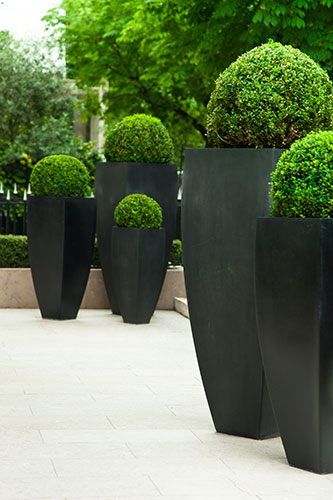 Contemporary Modern Pots