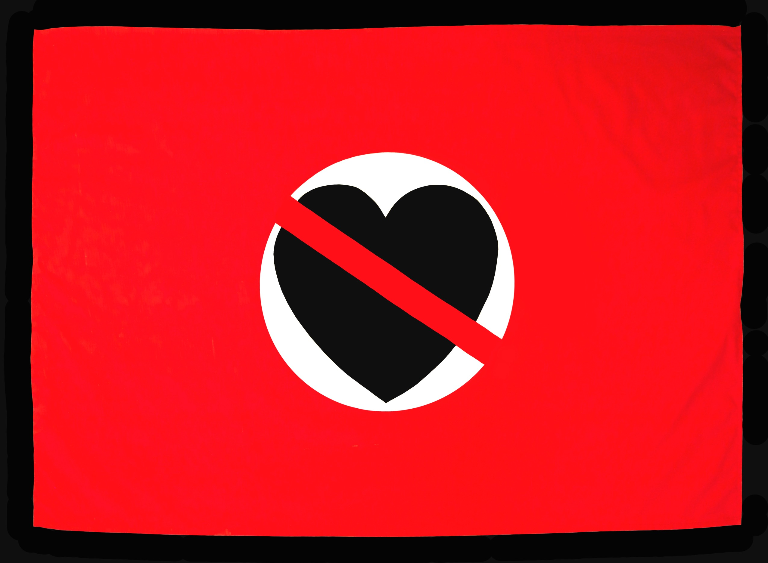 Flag Of The Heartless Nation by JF Whitney 2012