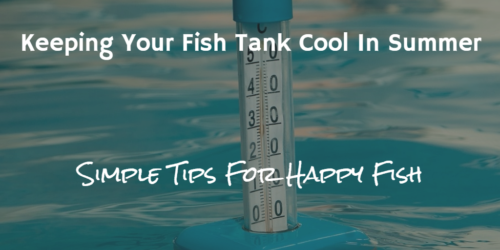 Keeping Your Fish Tank Cool In Summer