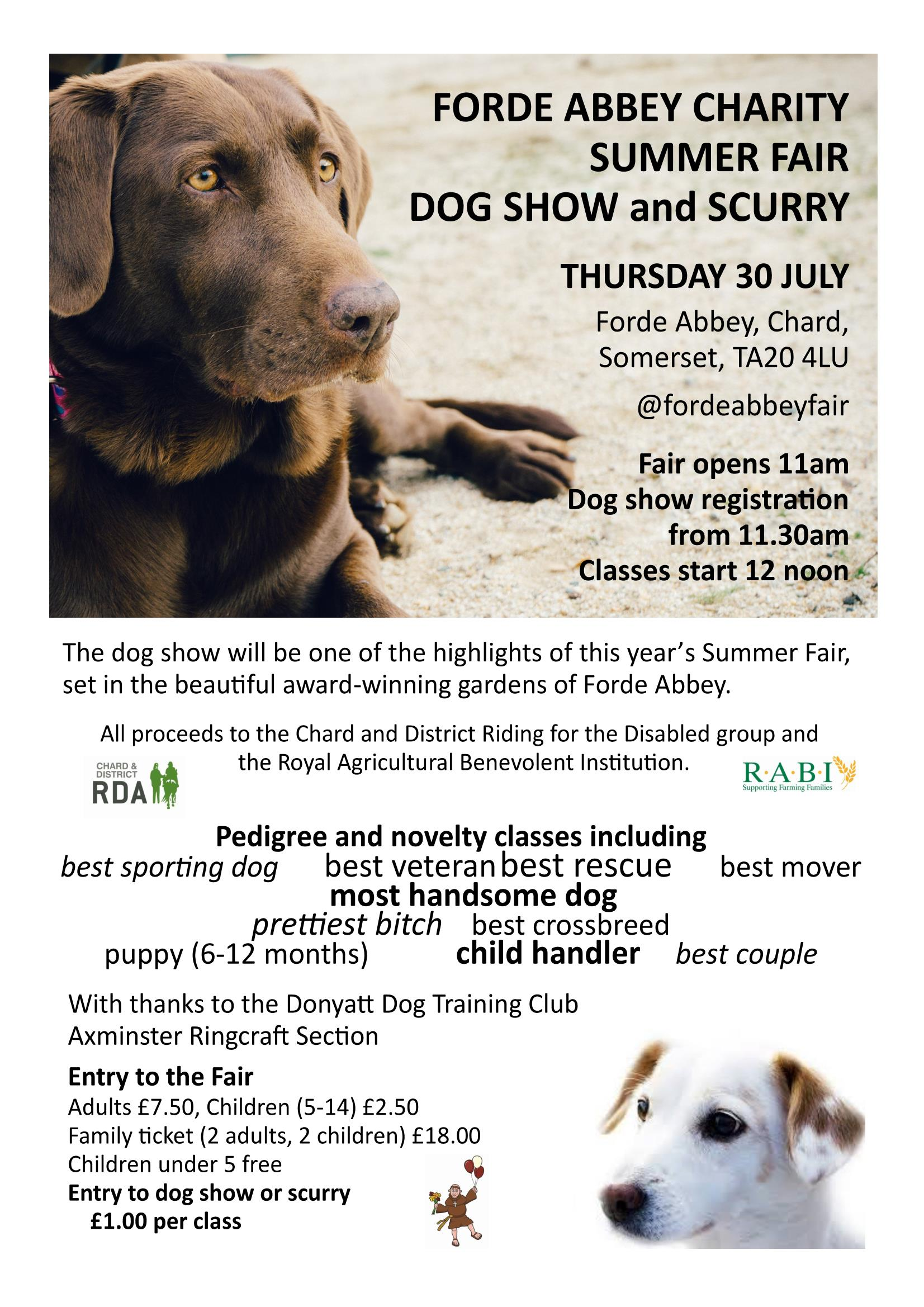 Charity dog show at Forde Abbey Summer Fair