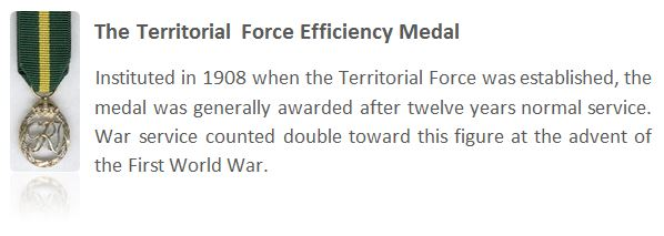 The Territorial Force Efficiency Medal