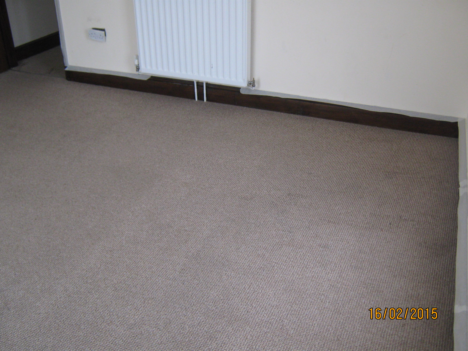 RENTAL LOUNGE CARPET