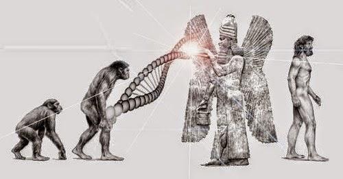 Image result for winged god babylon dna ape human