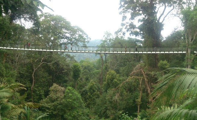 Penang Hill Canopy Bridge
