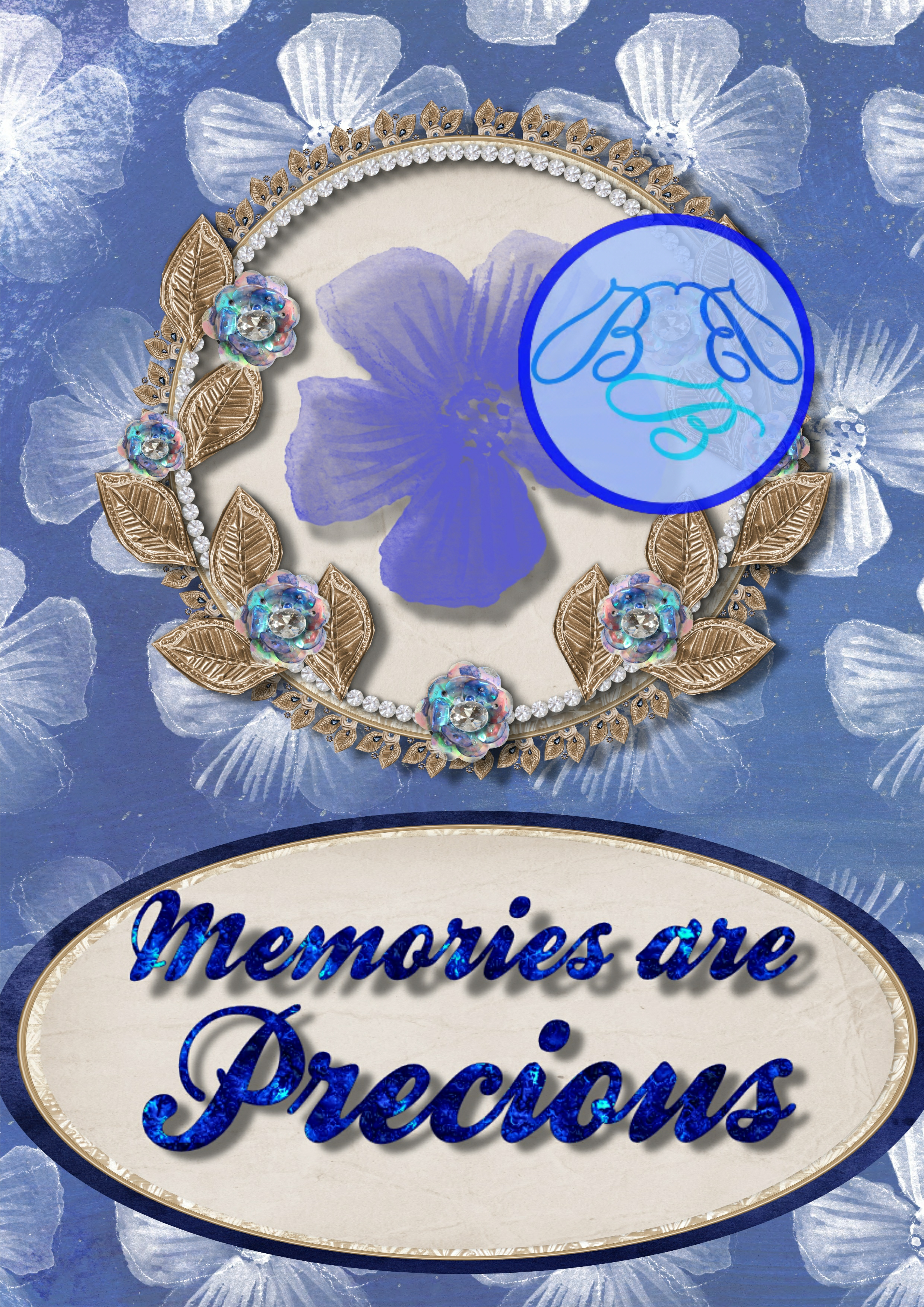 TBBBaA008 Memories are Precious