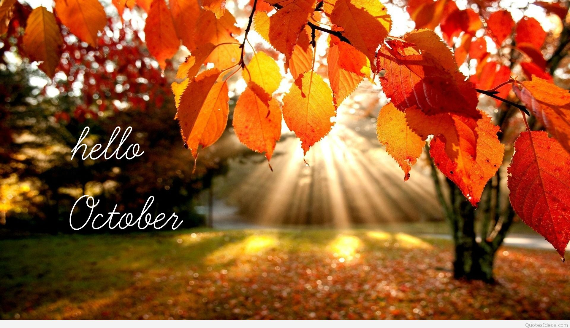 hello-october-hd-wallpapers.jpg