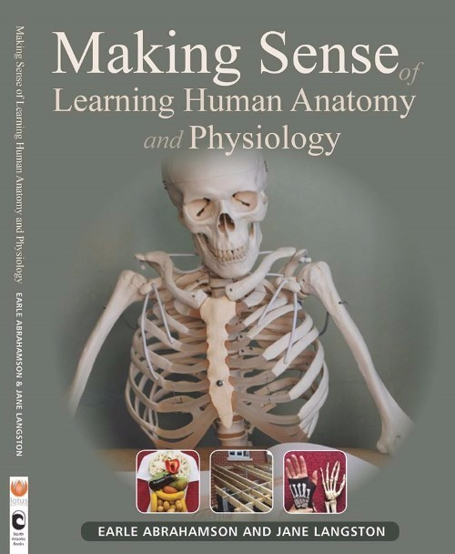 Making Sense of Learning Human Anatomy and Physiology Book