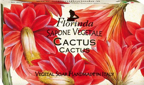Sapone  Florinda cactus
