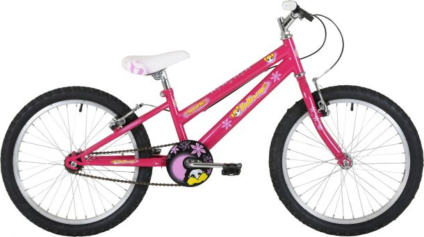 "Freespirit Buttercup 20"" Junior Girls Mountain Bike"