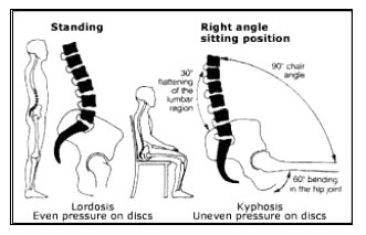 sittingcurvesjpg