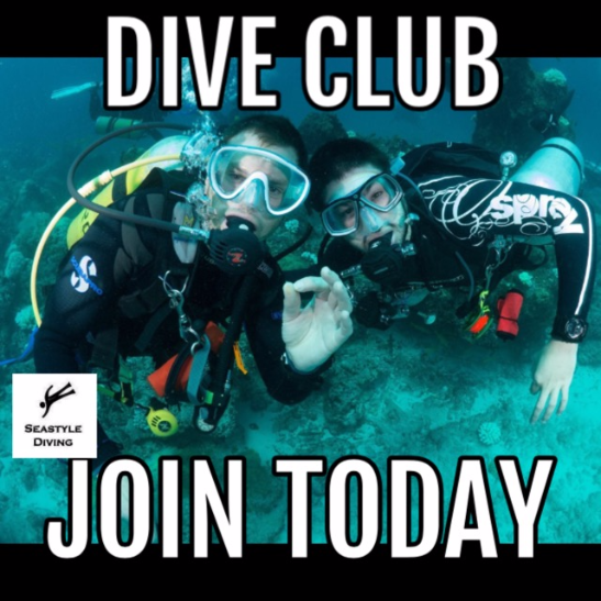 Seastyle Diving's Dive Club. No excuses as why not to dive!