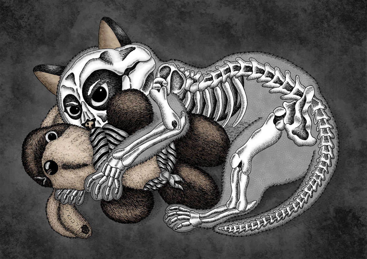 Memento Mori: The Ghost Cat by Jenny Bommert, 2015