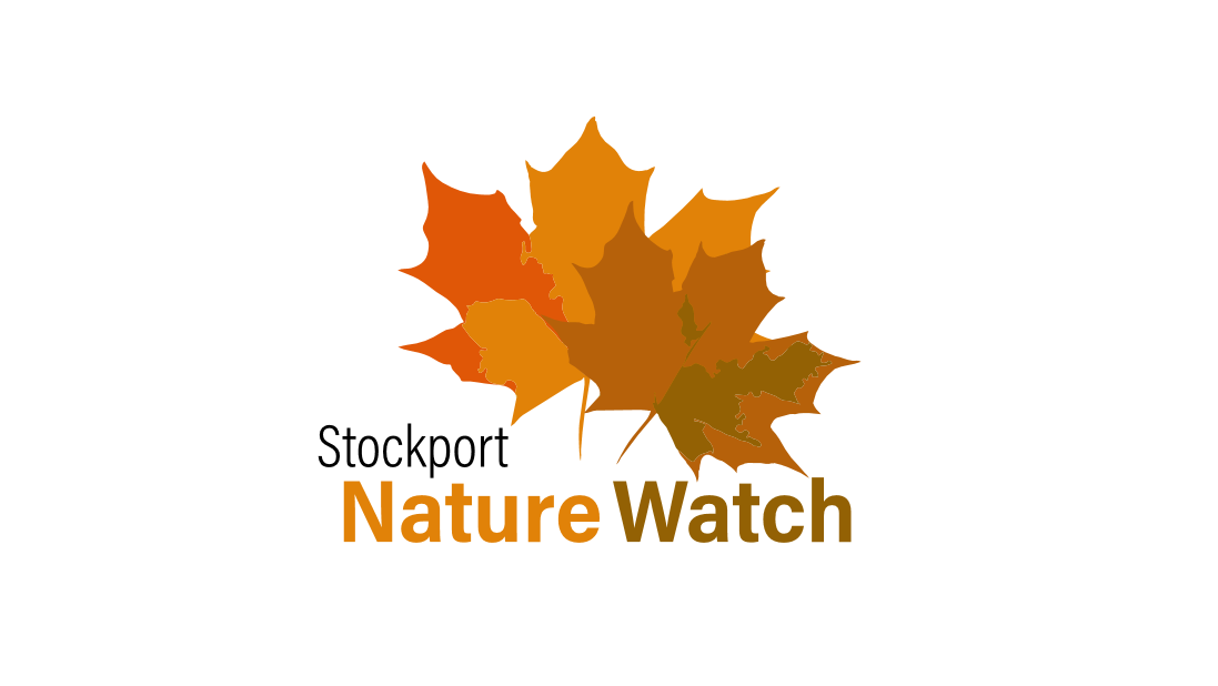 Stockport Nature Watch Welcome to our site