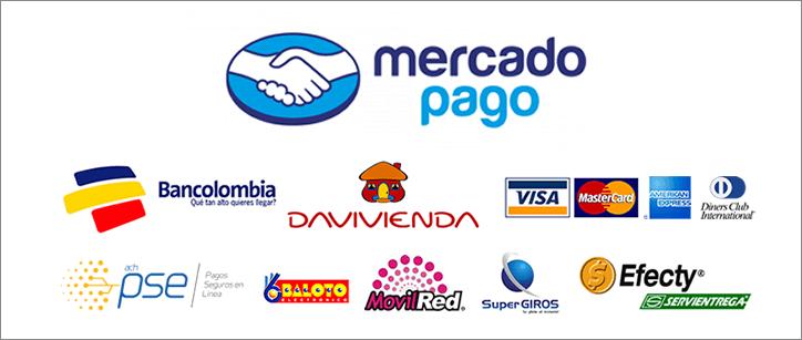pago-seguro-optpng