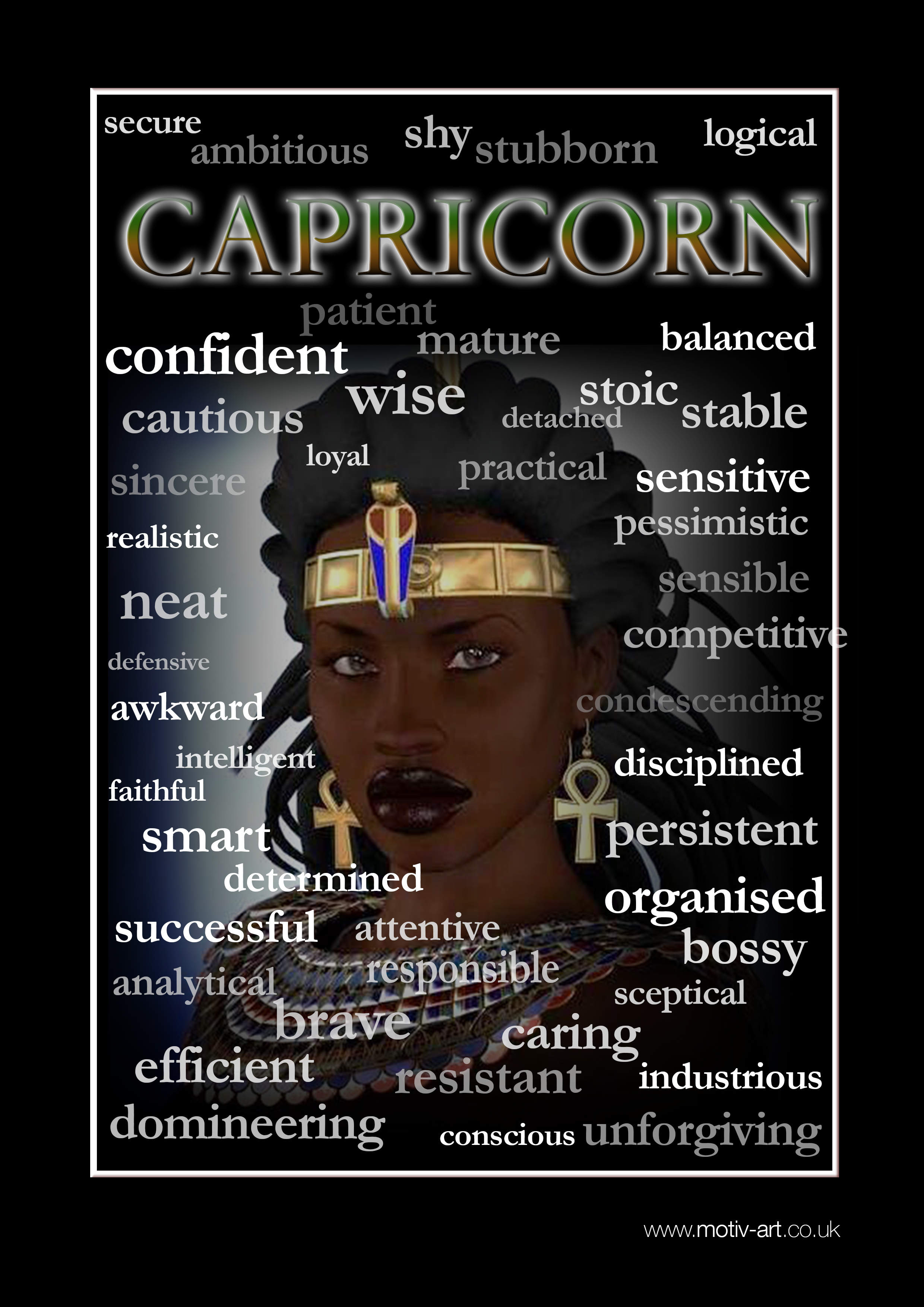 Capricorn 23 Dec - 20 Jan