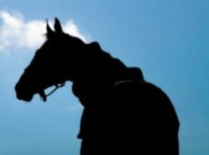Thoroughbred race horse silhouette